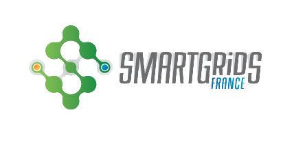 Smart Grids France